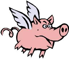 flying pigs2