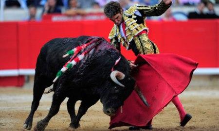 Bullfighter-Jose-Tomas-at-007