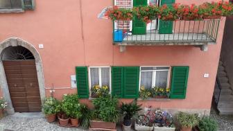 Visgnola Neighborhood2